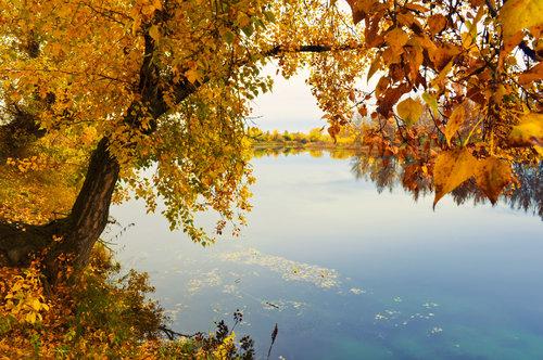 autumn-beach.jpg
