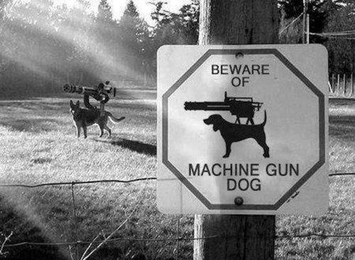 military-humor-funny-sign-machine-gun-dog.thumb.jpg.89ed76fded0c24dd2a9d2e477f2aa921.jpg